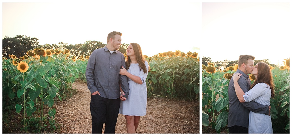 Sunflower Field Engagement Session at Pope Farm Conservancy in Middleton, Wisconsin